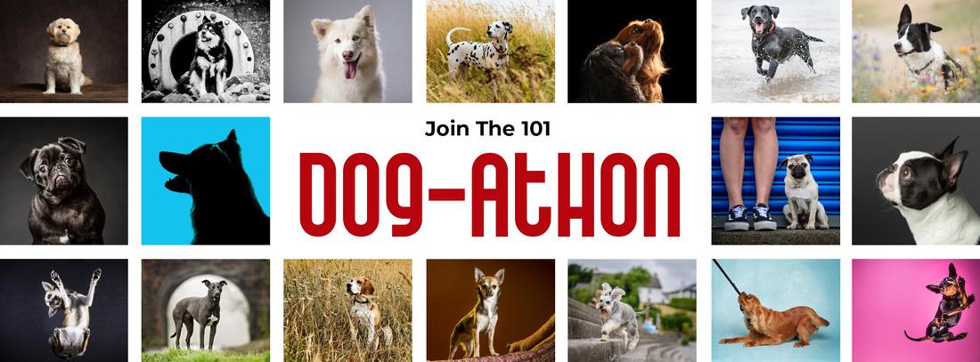 Dogathon FB Banner web
