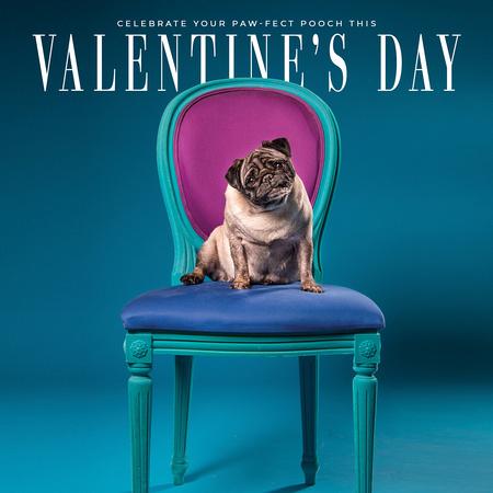 Vanity Fur Valentine's Day Ad 2